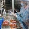 Cтволовые клетки пуповинной крови