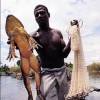 Самая большая лягушка в мире - Голиаф